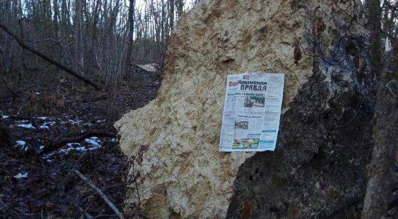 Валун с карьера, упавший в лесу рядом с жилыми домами.