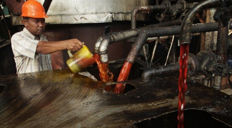 83% пальмового масла производится в Индонезии и Малайзии.