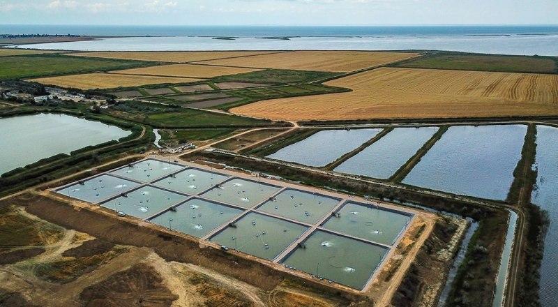 Фото пресс-службы Министерства сельского хозяйства