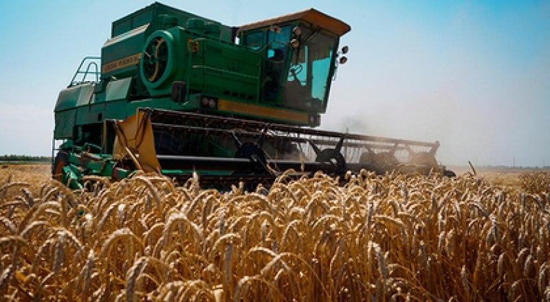 В Крыму осталось 276000 гектаров неиспользуемых земель.