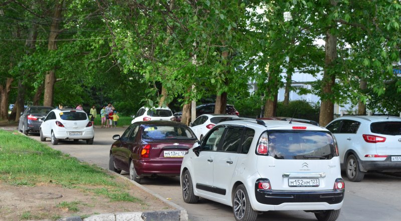 Симферополь превращается в город асфальта и машин. А дышать мы будем выхлопными газами, потому что сами уничтожаем деревья.