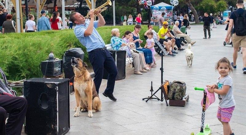 Виктор и Мухтар давно стали любимцами публики. Отравить пса - обидеть всю Ялту.