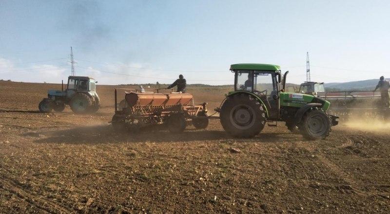 Из-за засухи грунт на полях превращается в пыль, что затрудняет проведение посевных работ. Фото пресс-службы ФГБУН НИИСХ Крыма.