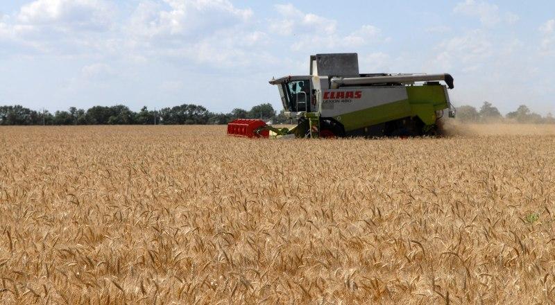 Несмотря на то, что год выдался неурожайным, Крым без хлеба не останется.