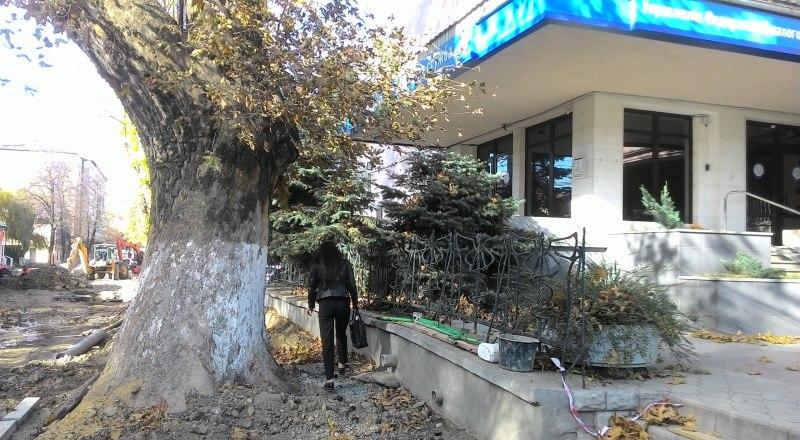 Пешеходы между деревом и оградой пройти могут, с коляской это сделать будет уже сложнее, но вырубать такой роскошный платан - не выход.