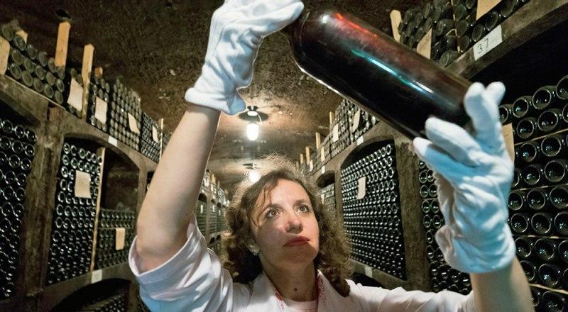 Виноделы положительно оценивают отраслевое районирование полуострова. Фото Сергея МИХЕЕВА и Сергея Мальгавко.