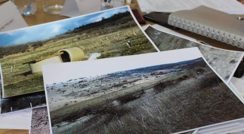 Фото: пресс-служба Министерства сельского хозяйства Республики Крым