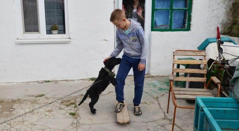 Если не удаётся подружить детей с животным, то обязательно обратитесь к специалисту.