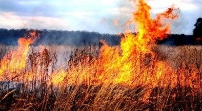 Сезон возгорания сухой травы в самом разгаре.